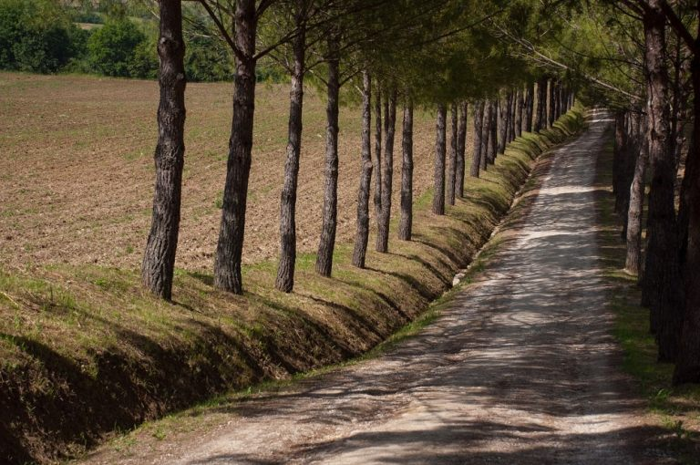 AGRITURISMO CHARME TOSCANA- VIALE